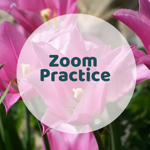 Once a week, Kay invites all members to join her in a Zoom session to practice what you are learning with your self-guided work. She will guide you and give you feedback.