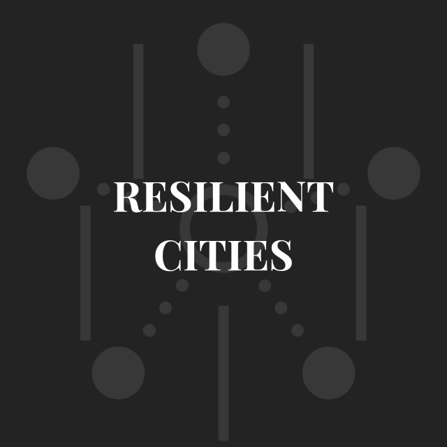 icon-resilient-cities.png