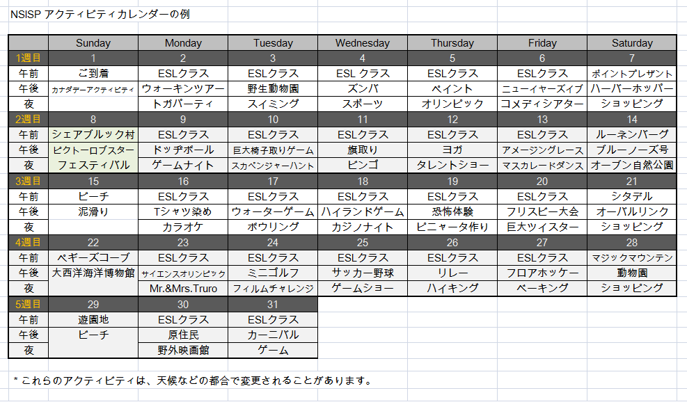 NSISPアクティビティカレンダーの例2019年度版.png