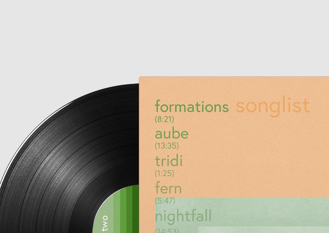 vinyl_album_back_detail.jpg
