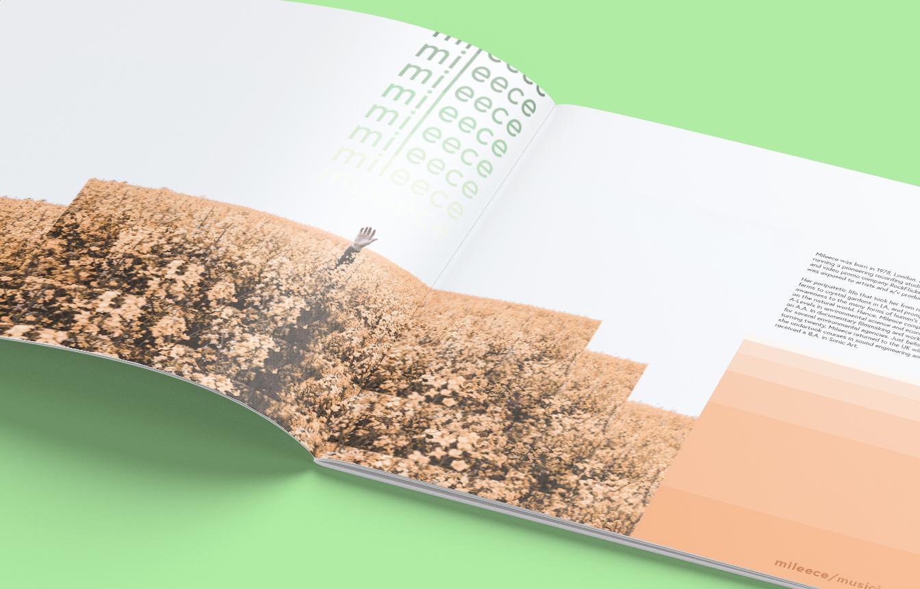 page_1_detail.jpg