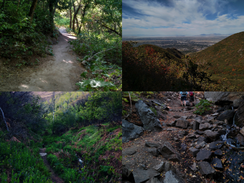 37 Beus Canyon Trail Collage.jpg