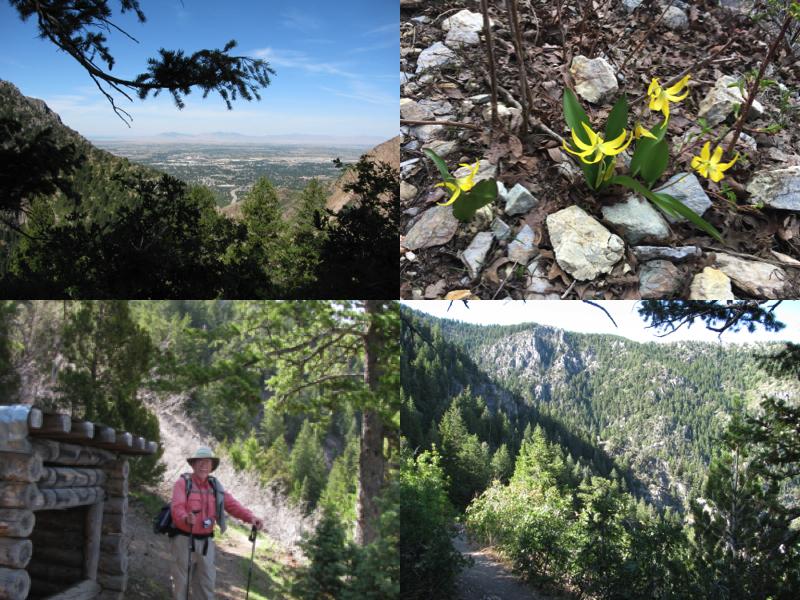 Indian Trail 46.jpg