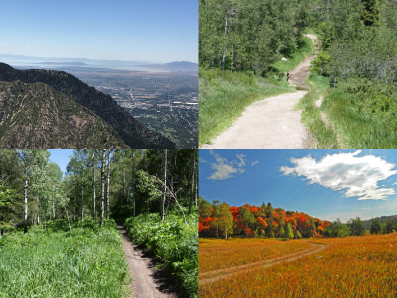 34 Ogden Canyon Overlook Trail Collage.jpg