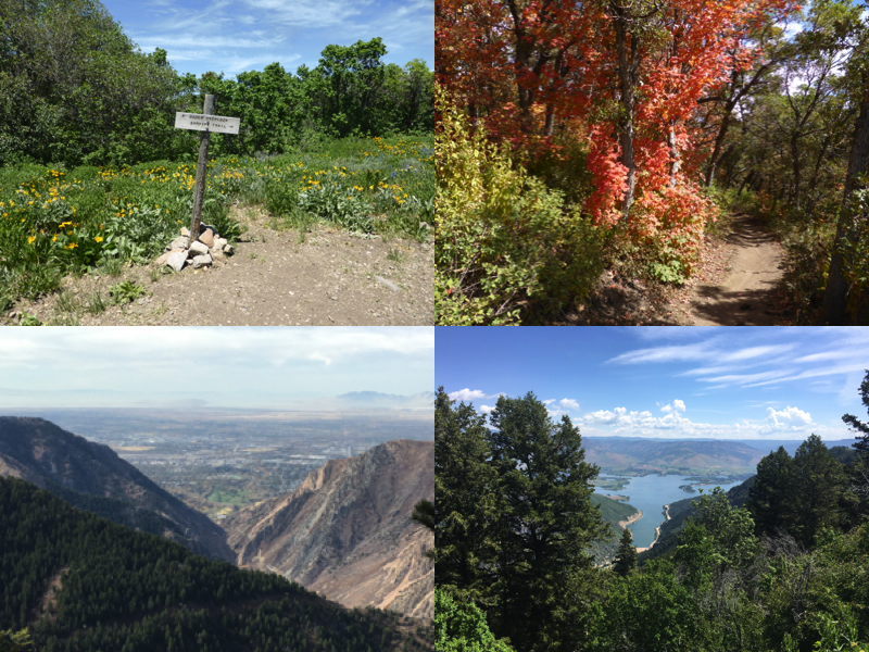 Sardine Peak Trail 34a.jpg