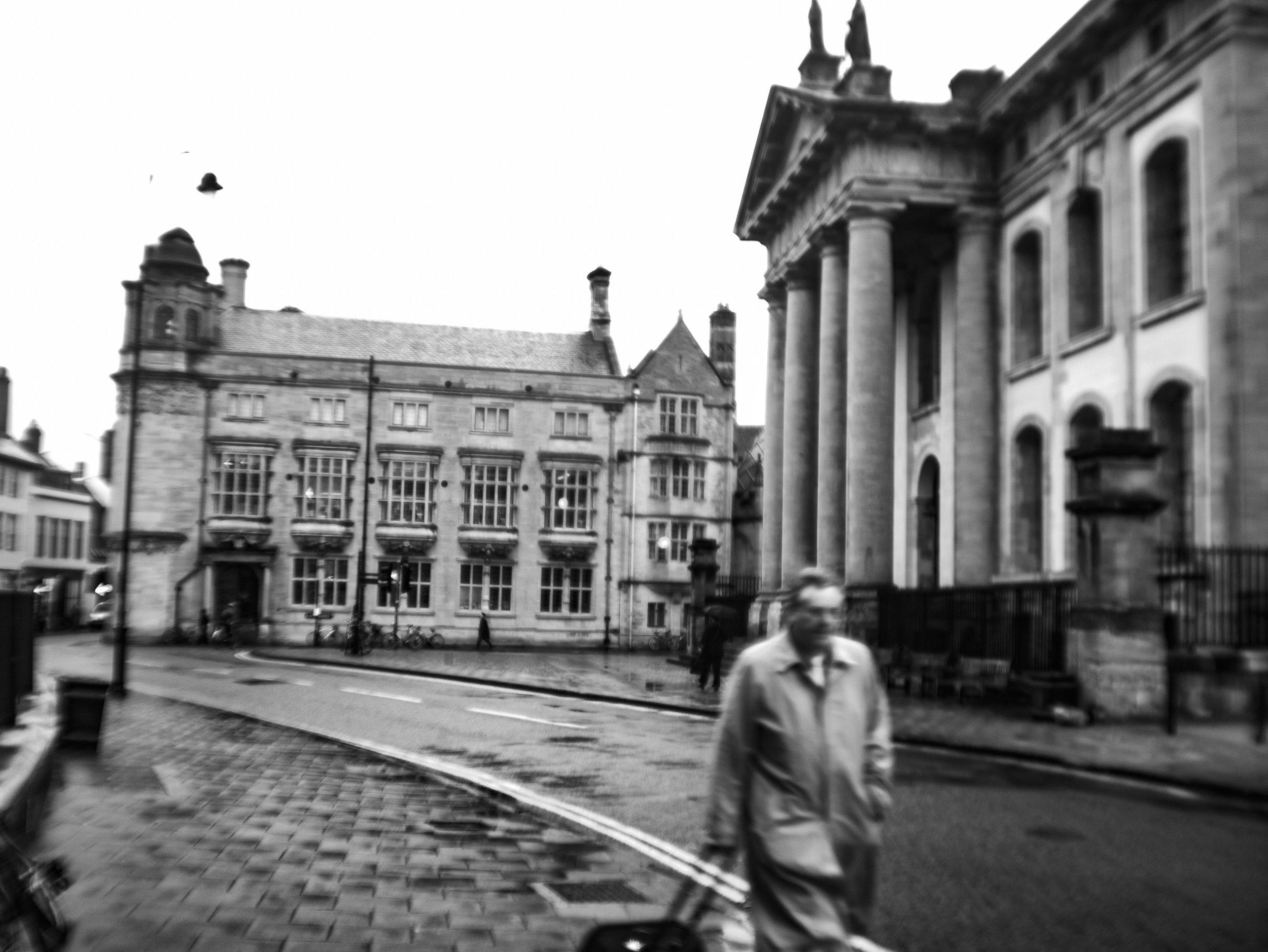 Oxford Down -