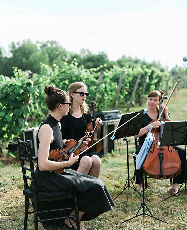 For this beautiful Annapolis Valley wedding, the couple chose Celtic music for the ceremony and then opted for laid back Jazz standards for their cocktail hour- we love setting the atmosphere!  #halifaxweddingphotography #novascotiawedding #peiwedding #newbrunswickwedding #newfoundlandwedding #Eastcoastwedding #weddinginspo #novascotiawedding  #instaweddings #tendermoments #realwedding  #thedailywedding #huffpostido #featuremeoncewed #junebugweddings #weddingstyle  #weddingmoments