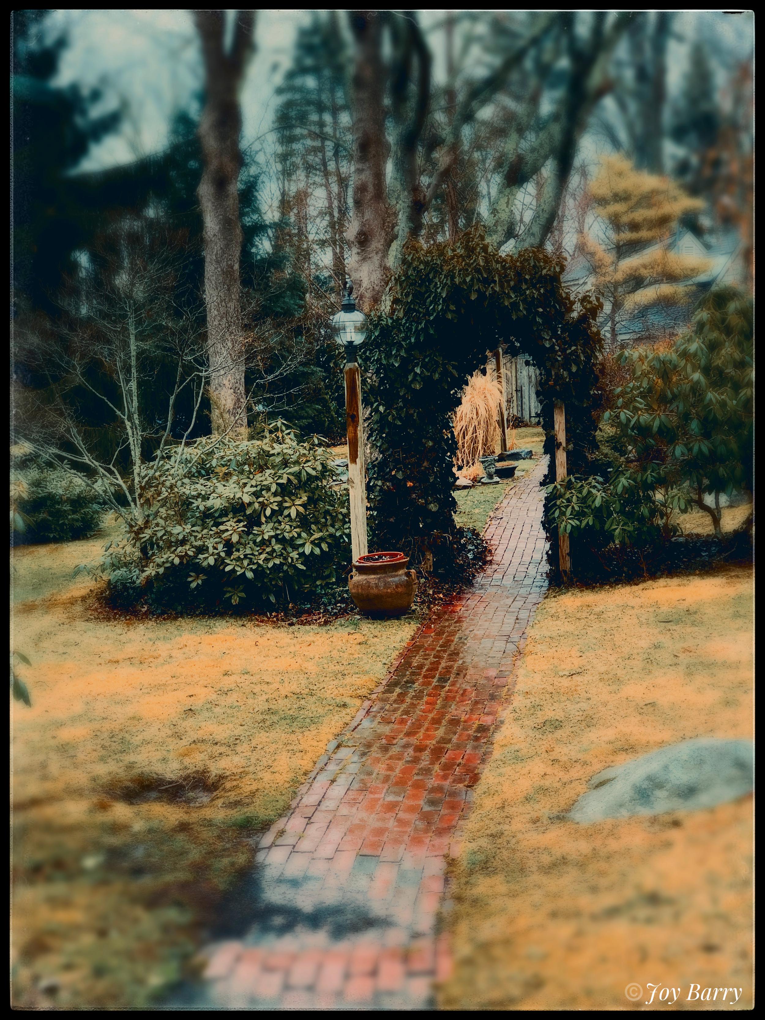 April 8, 2019 - Wandering wondering.