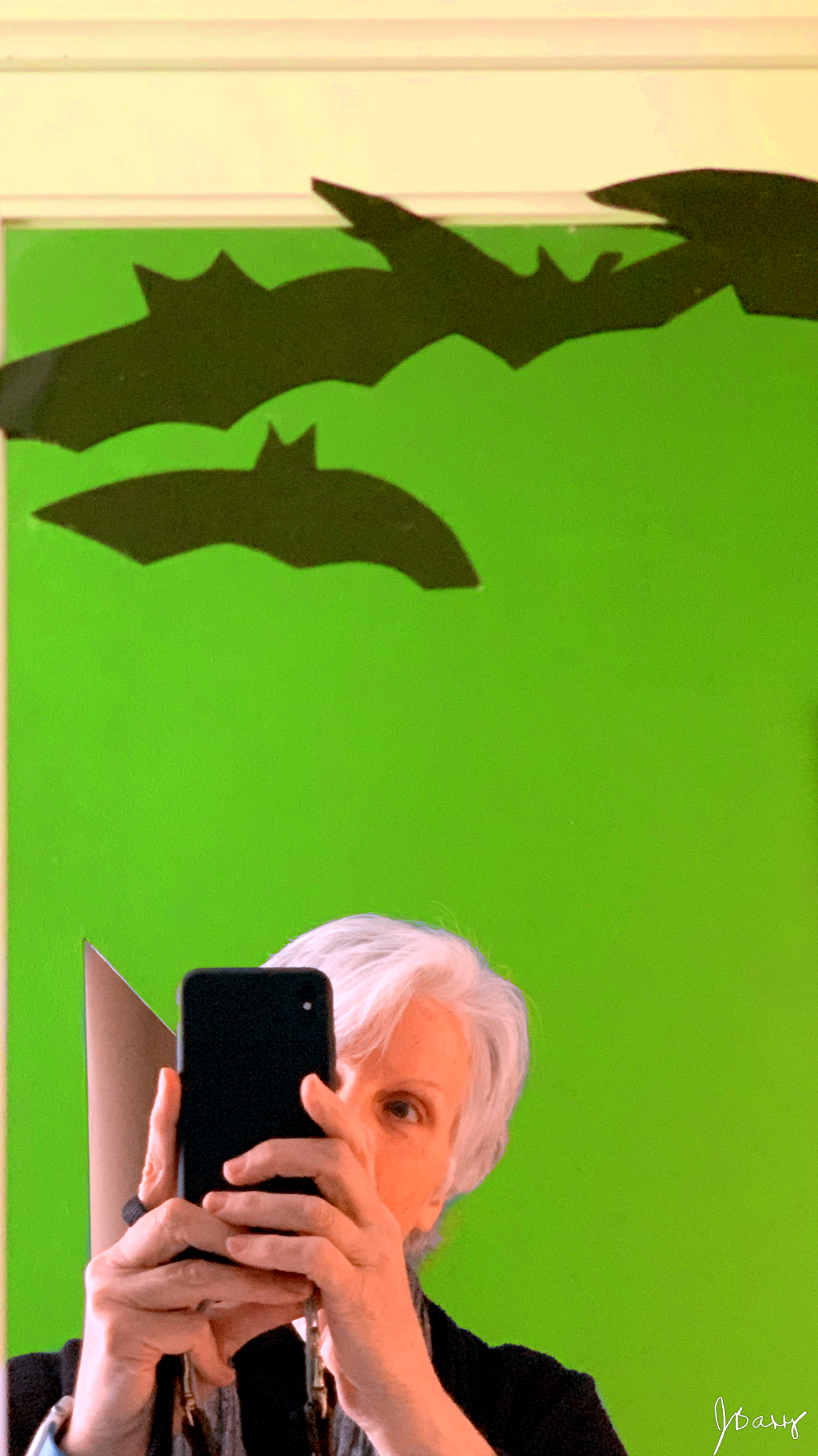April 11, 2019 - Mirror, mirror on the wall; who's the battiest of them all?! [Selfie taken at the Edward Gorey House in Yarmouth Port, MA]