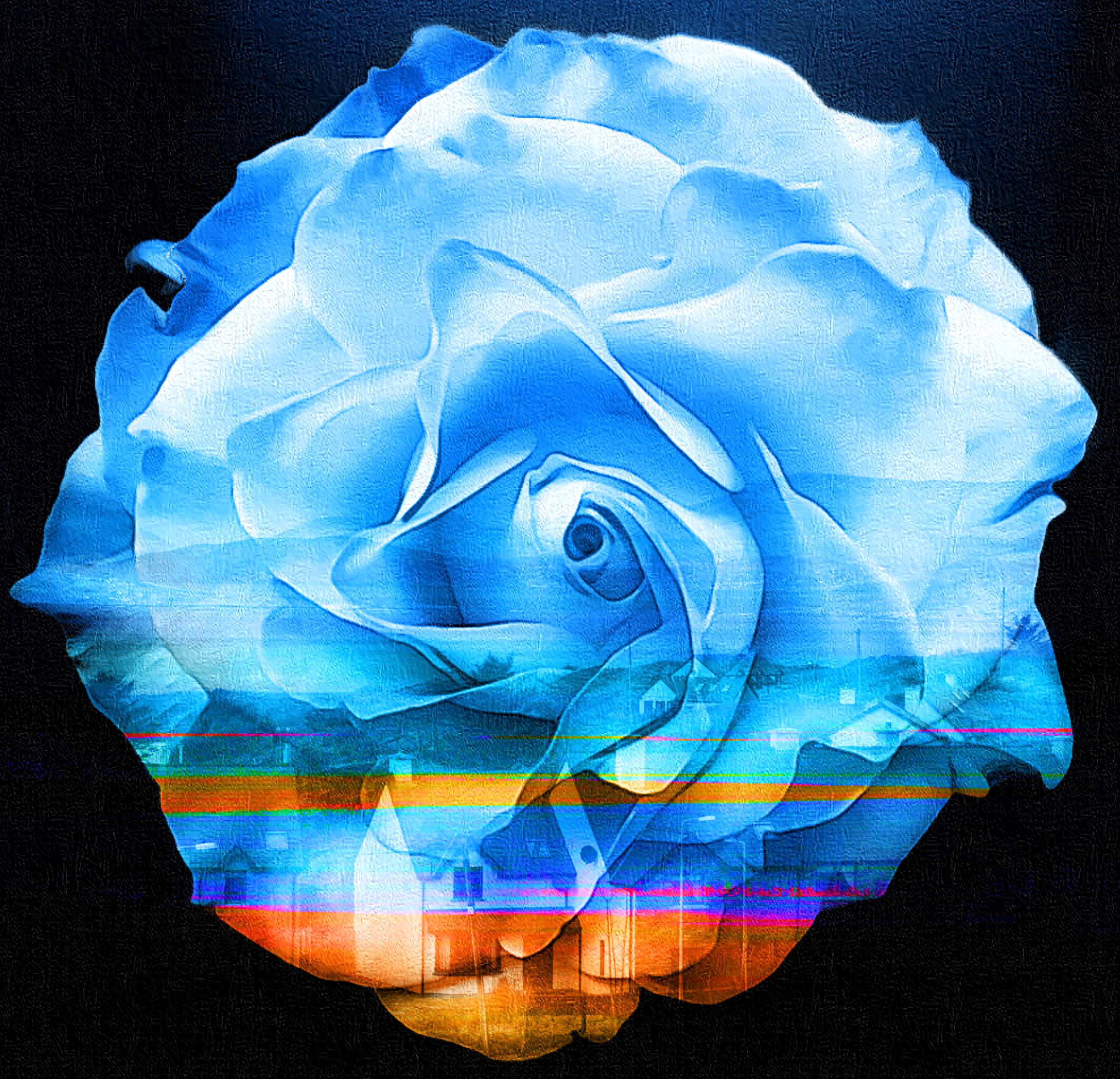 April 30, 2019 - Rose of Shannon, Ireland [Magic Eraser, iColorama, and FotoDa]