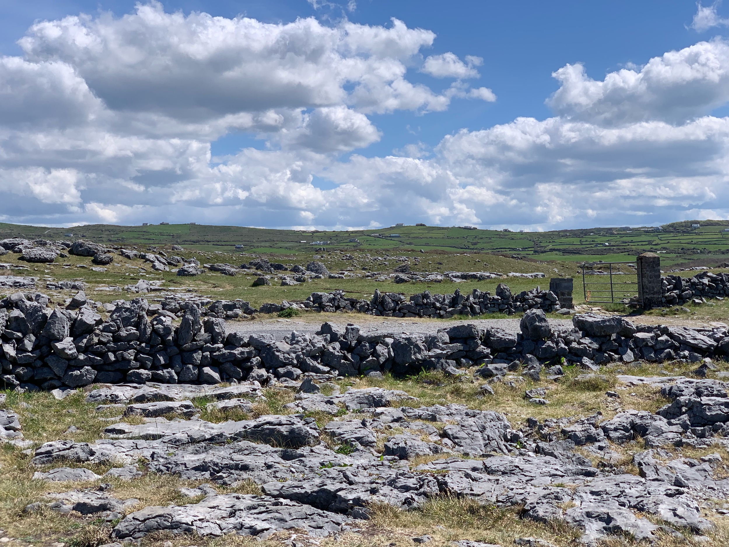May 25, 2019 - Burren National Park, Corofin, County Clare, Ireland. No edits.