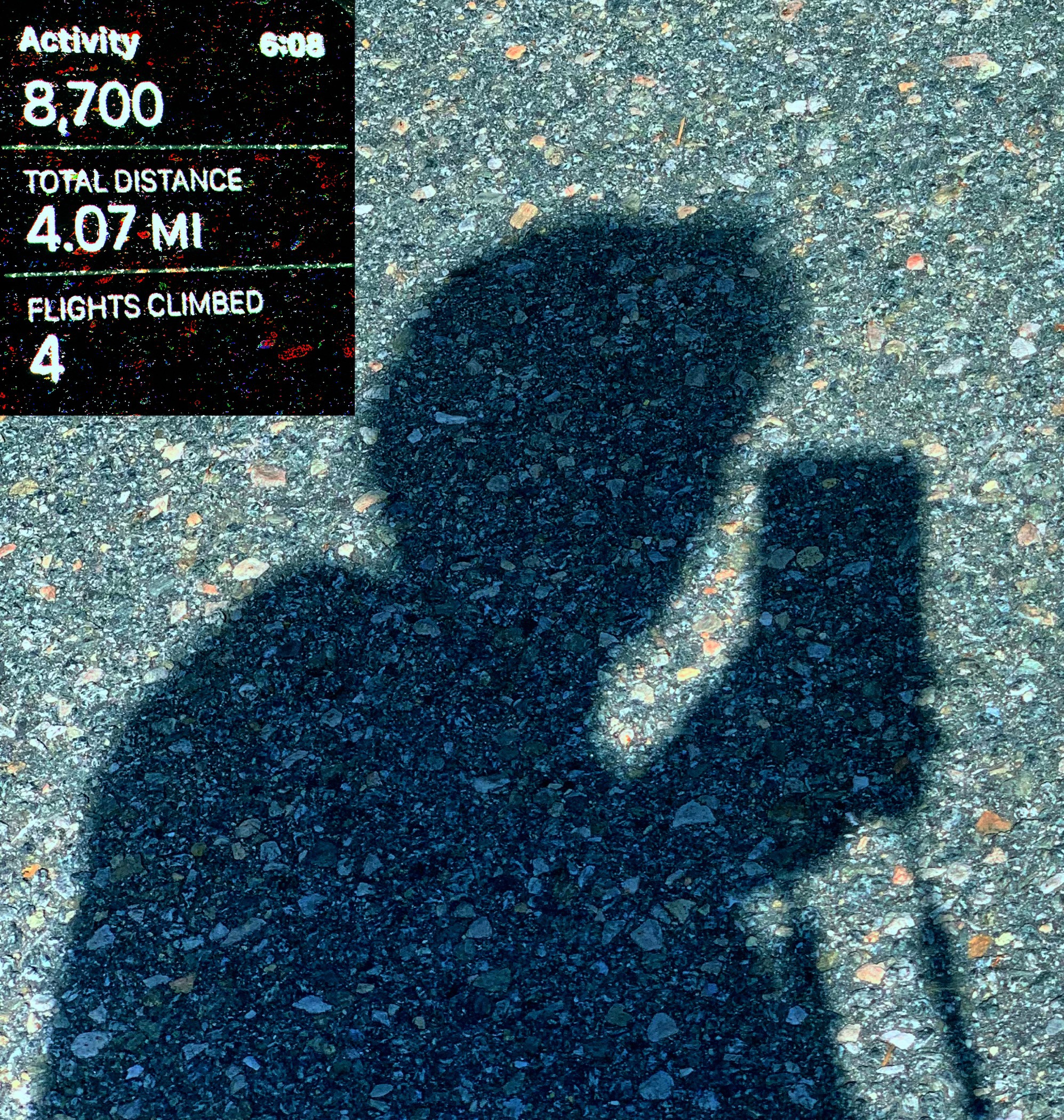 August 24, 2019 - Me and my shadow…
