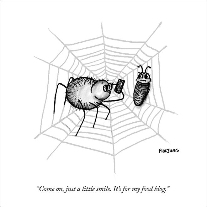 SpiderBlog.jpg