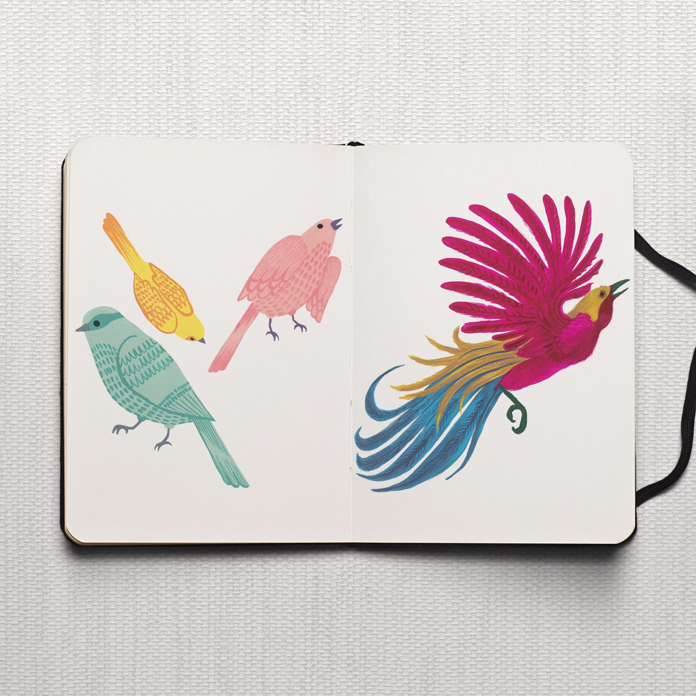 Studio Maarit - Sketchbook -  Birds - Gouache
