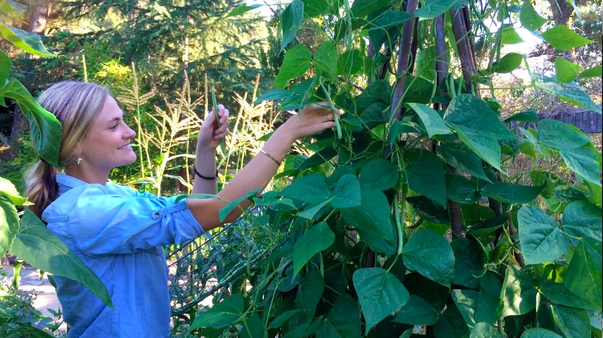 Cassie & green beans.jpg