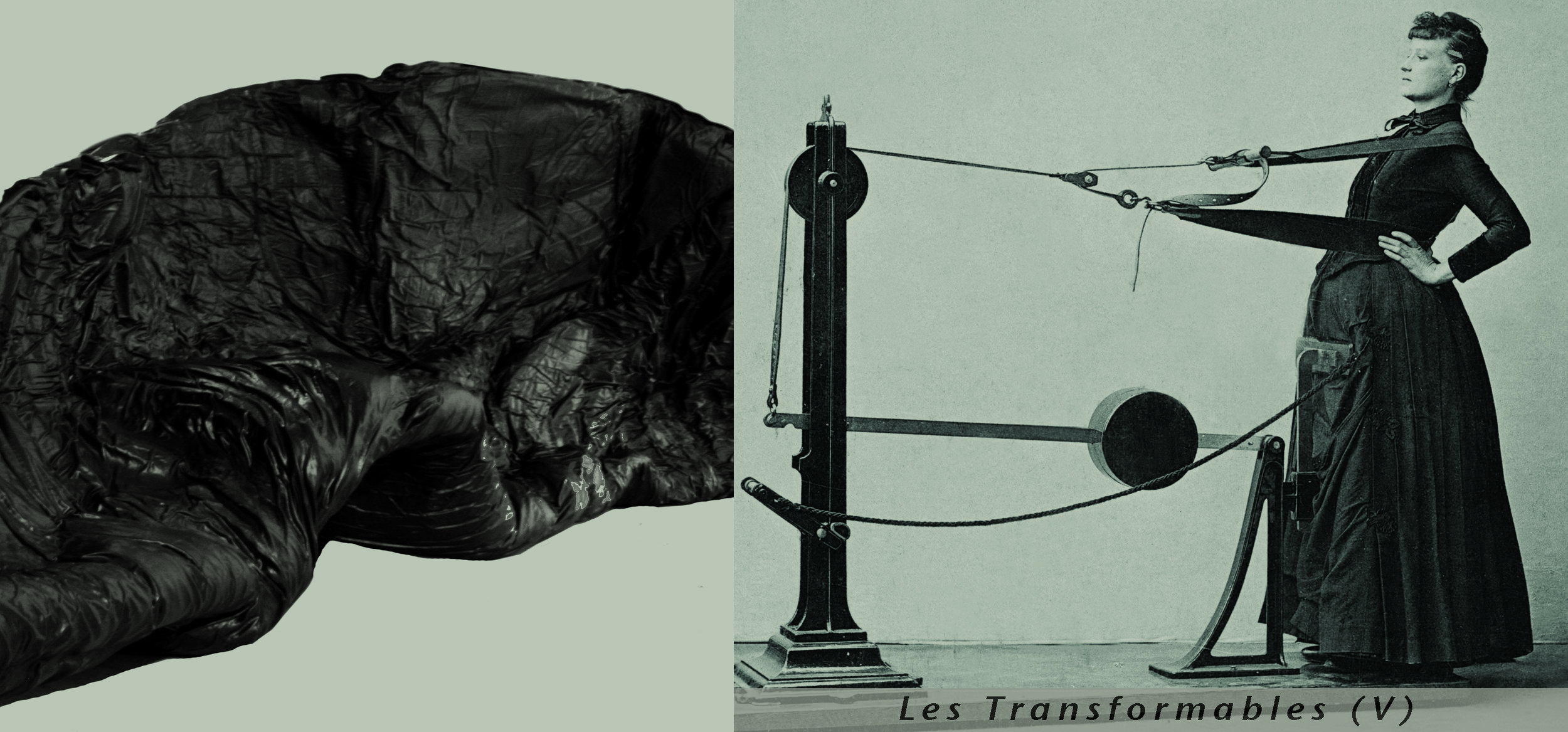 Transformables.jpg