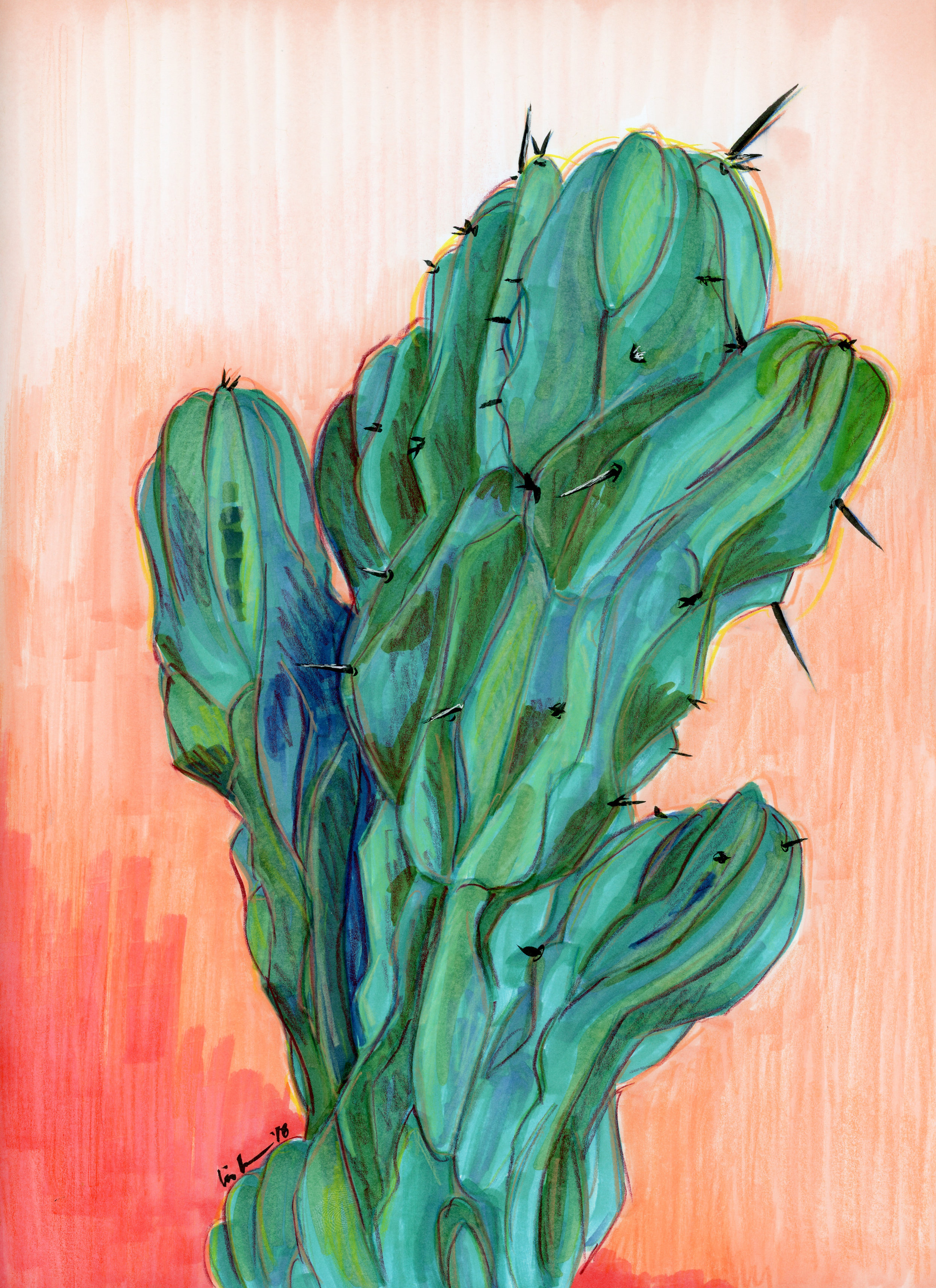 cactus003.jpg