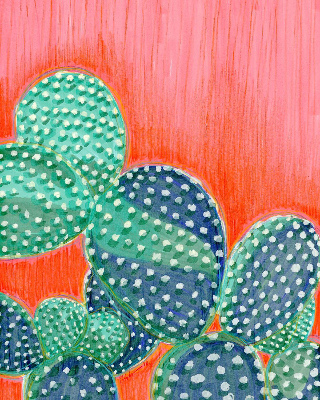 cactus001.jpg