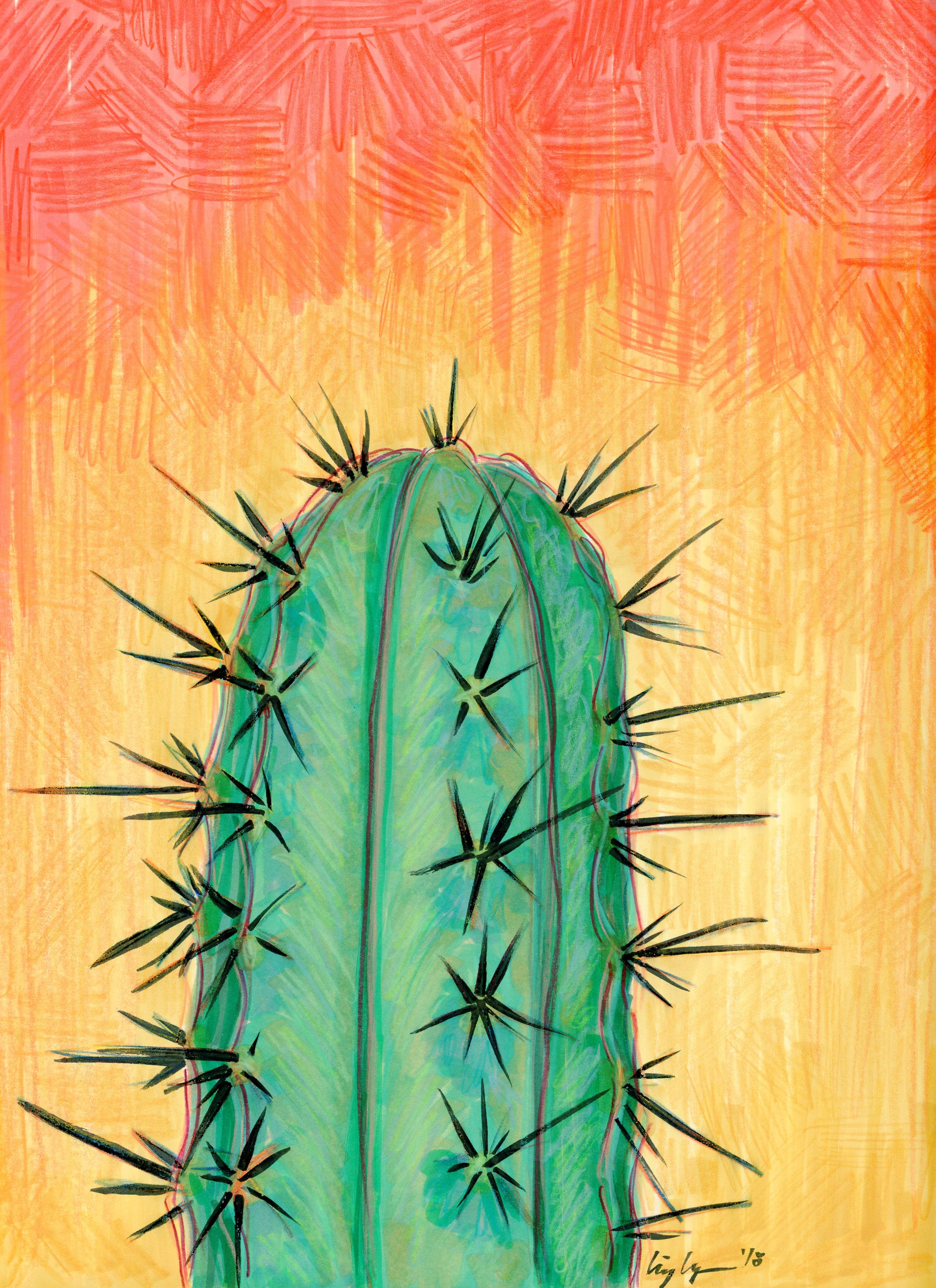 cactus002.jpg
