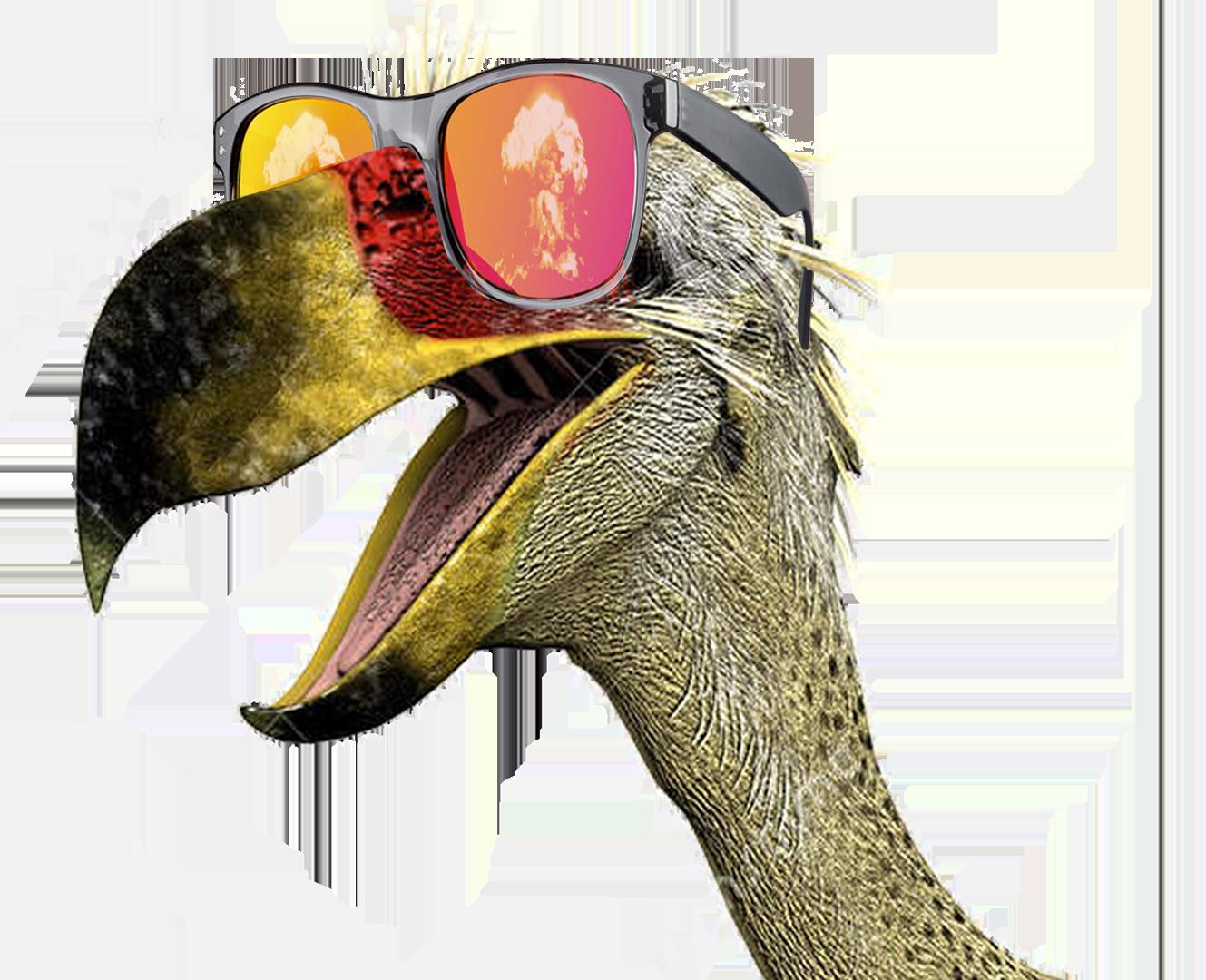 terrorbird sketch comedy - weird since 2015