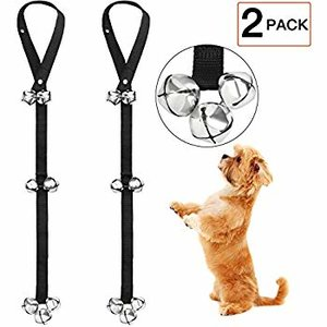 maltipoo-training-bells.jpg