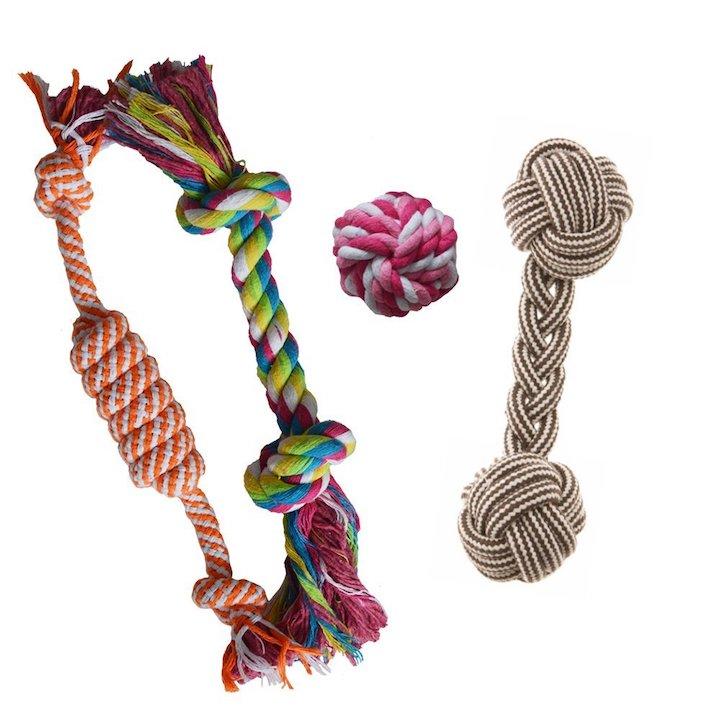 maltipoo-rope-toys.jpg