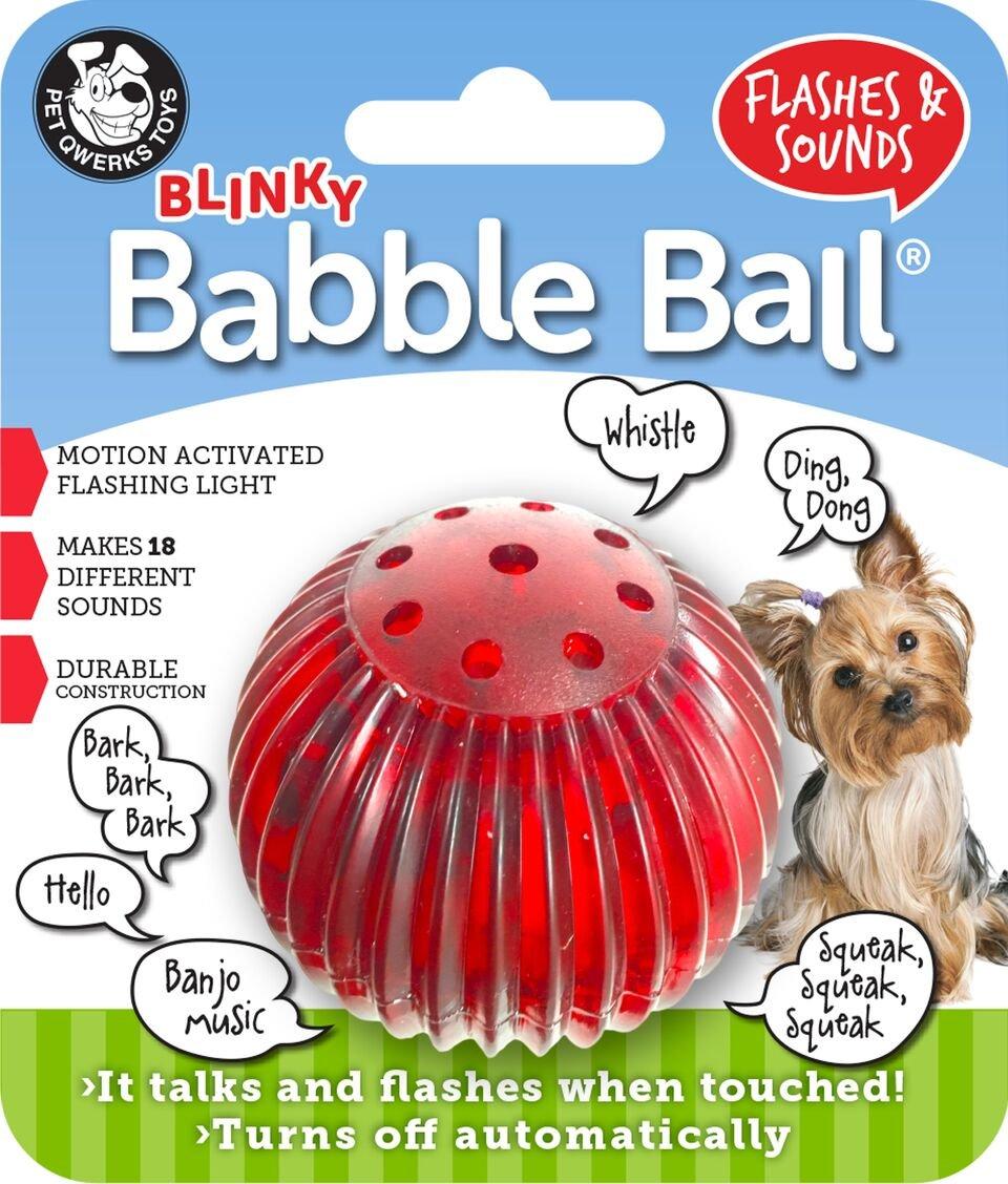 babble-ball-maltipoo