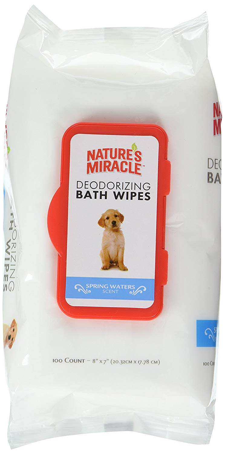 Maltipoo-face-wipes