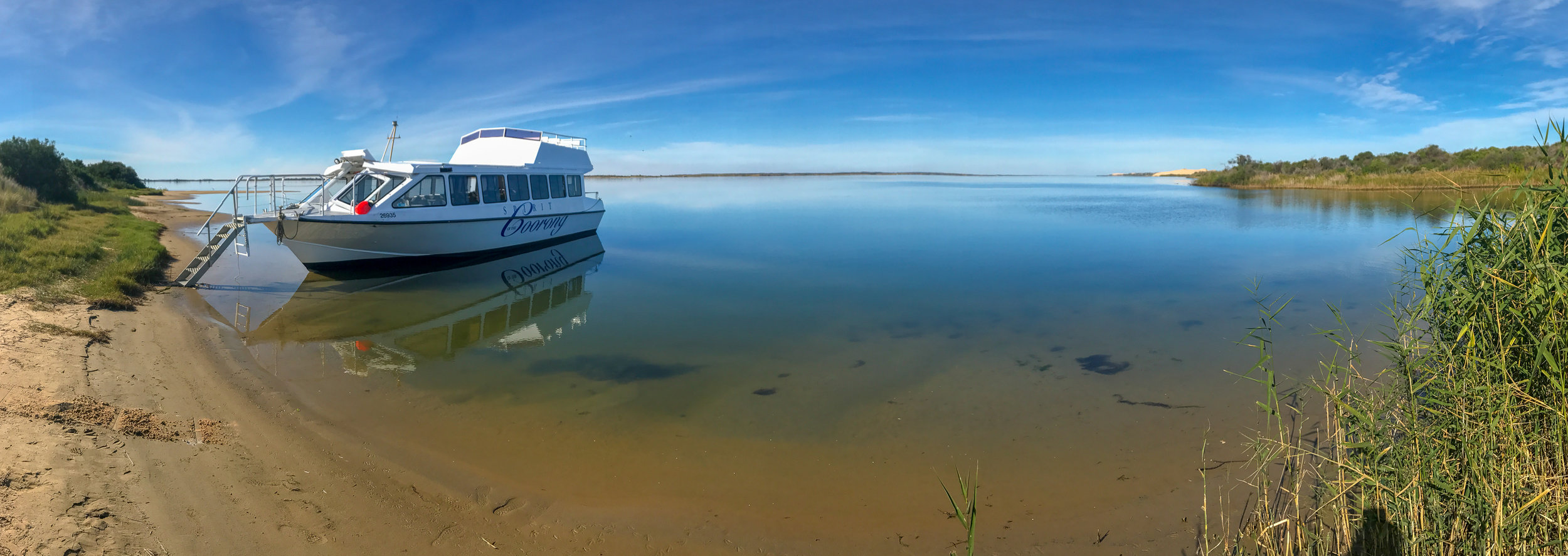 Discovery Cruise - Our 3.5 hour half day Coorong Tour