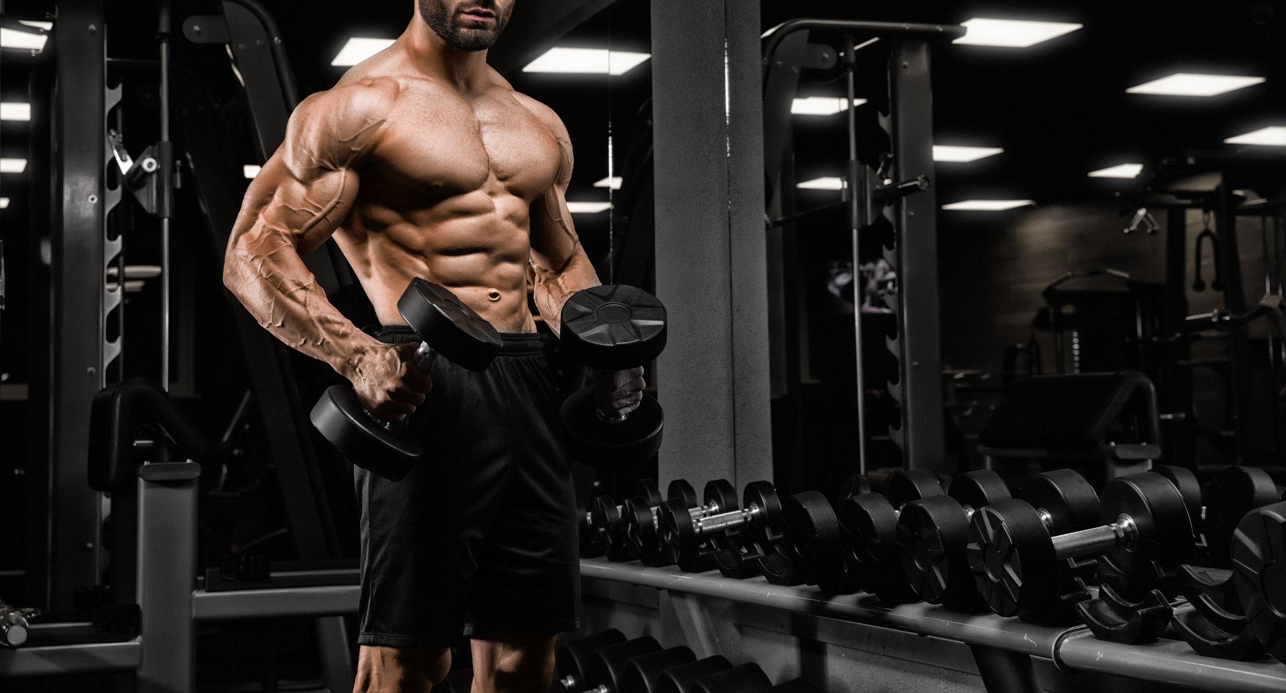 gain muscle mass sarms