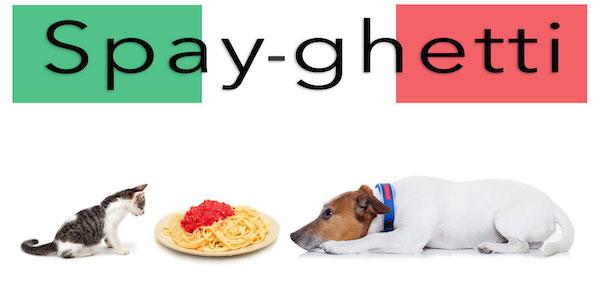 spayghetti3 copy.jpg