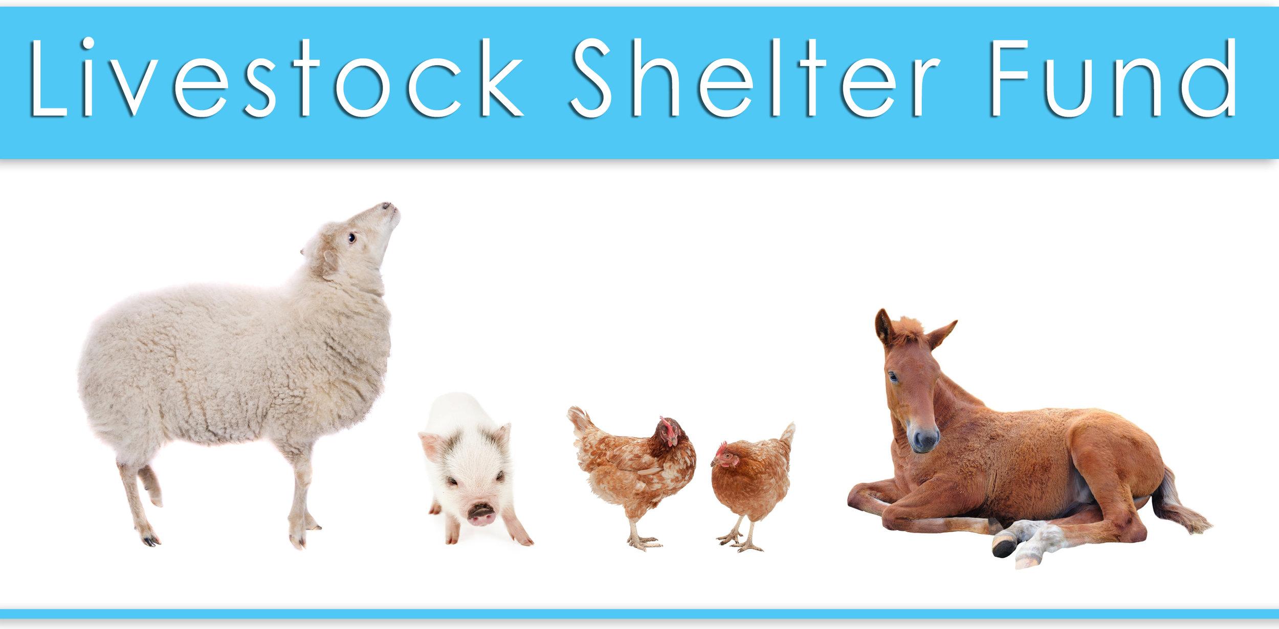 livestock shelter fund.jpg