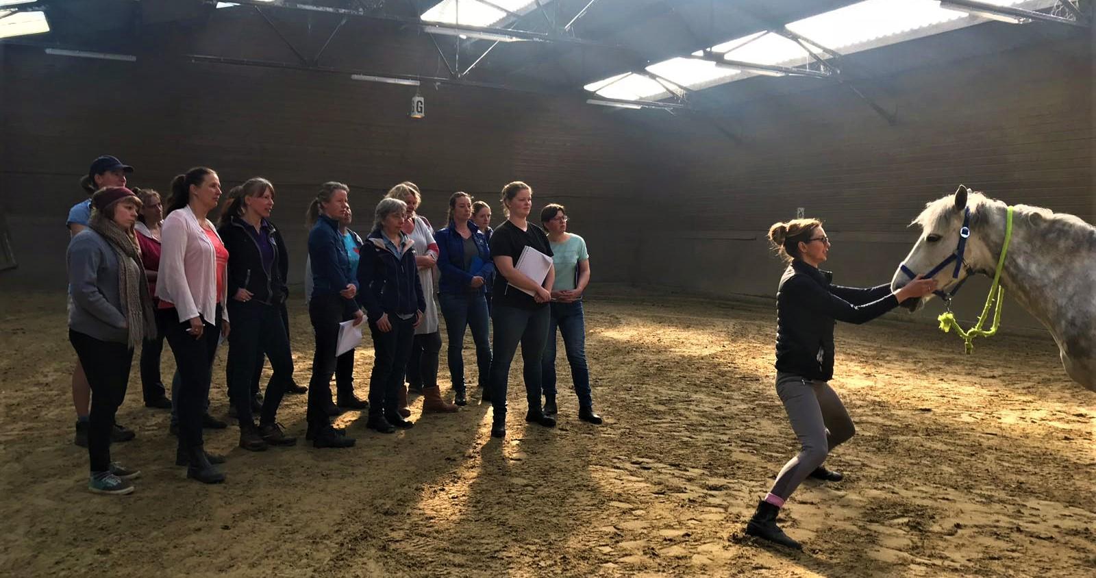 Een unieke opleiding - Er is veel aandacht voor de specifieke Cranio-Sacrale technieken en het gaan leren voelen van de verschillende lichaamsritmes. Naast de Cranio-Sacrale technieken, is er ook veel aandacht voor de totale gezondheid van het gehele paard. Je leert over voeding, de spijsvertering en veel voorkomende ziektes bij paarden die je als therapeut tegenkomt. Wat kan je zelf en wanneer verwijs je door? Hier op de juiste wijze advies in geven en naar handelen is wat het verschil maakt in het resultaat van je behandeling!Zo krijg je echt de ervaring en het gevoel wat nodig is om straks alleen te gaan werken, wat deze opleiding uniek en anders maakt.