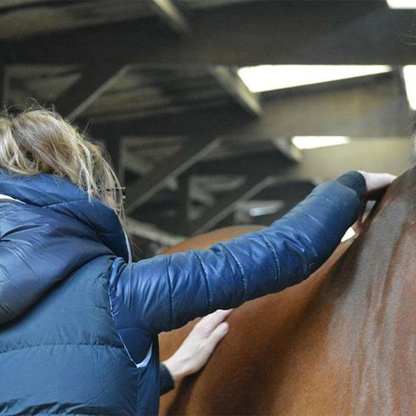 Natuurgeneeskundig adviesconsult - Om de oorzaak van het probleem te achterhalen, is een uitgebreide anamnese nodig. Ook is een fysiek onderzoek belangrijk, waarbij ik gebruik maak van de standaard reguliere metingen, maar ook het paard doormeet met behulp van de Lecher-antenne en de connectiesensor.