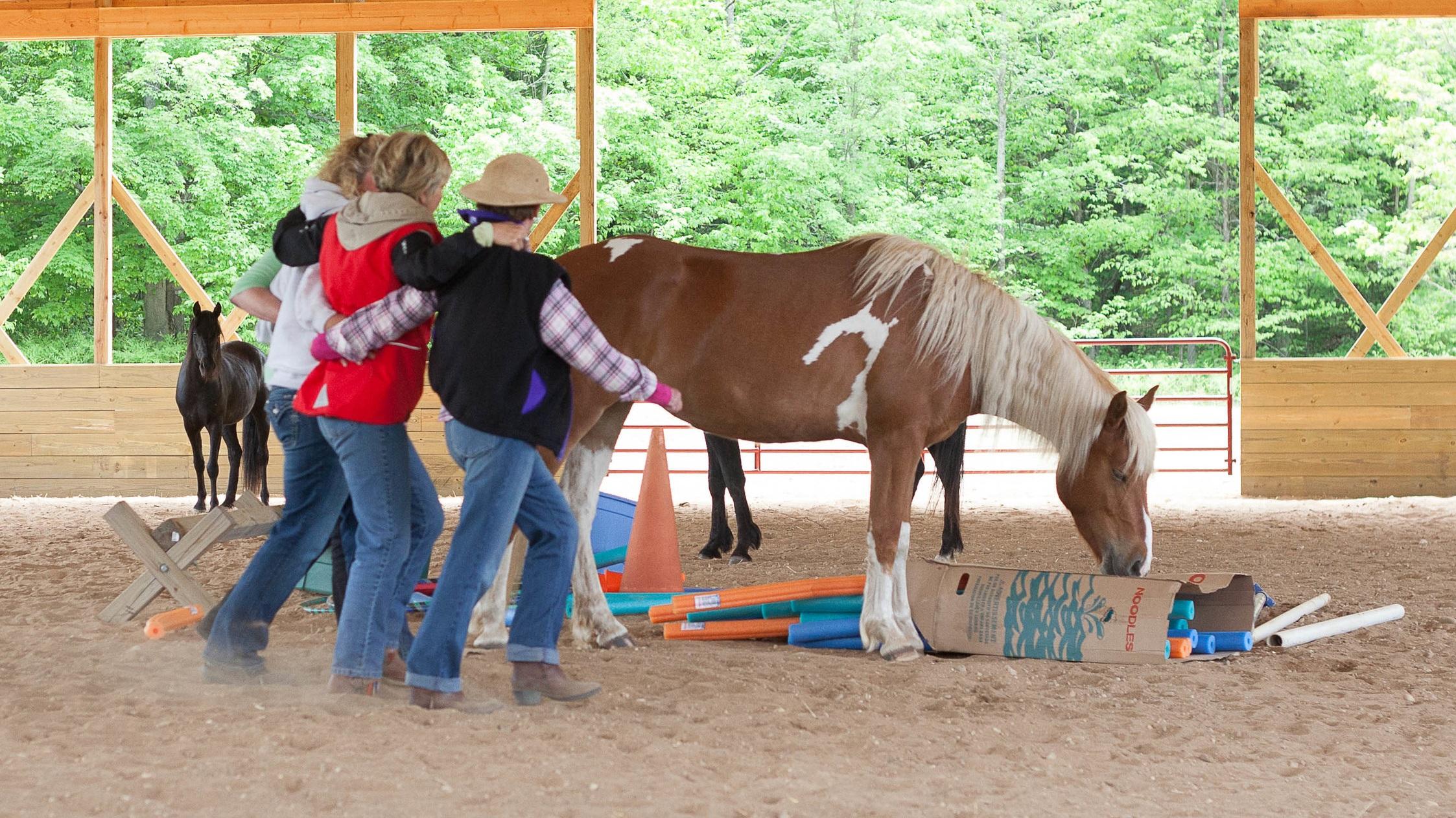 Basics In Natural Horsemanship - Level 1   Begins September 10, 2019