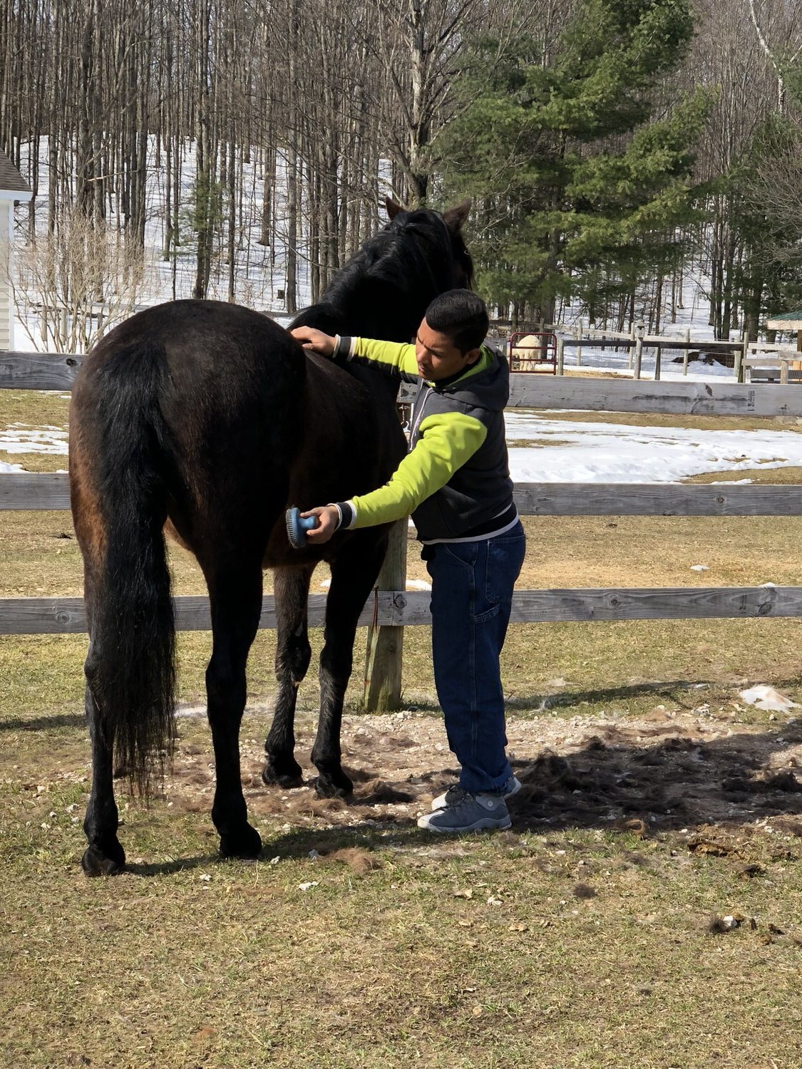 Equine-assisted Psychotherapy and Personal Development at Peace Ranch
