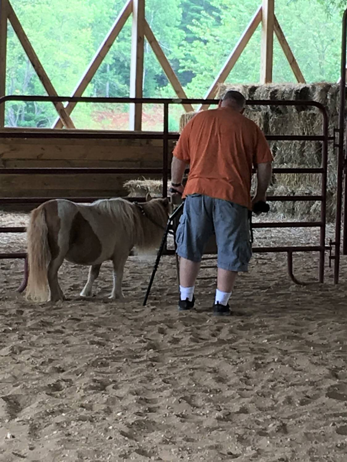 Animal Therapy for Disabled Adults in Michigan (via BrickWays)