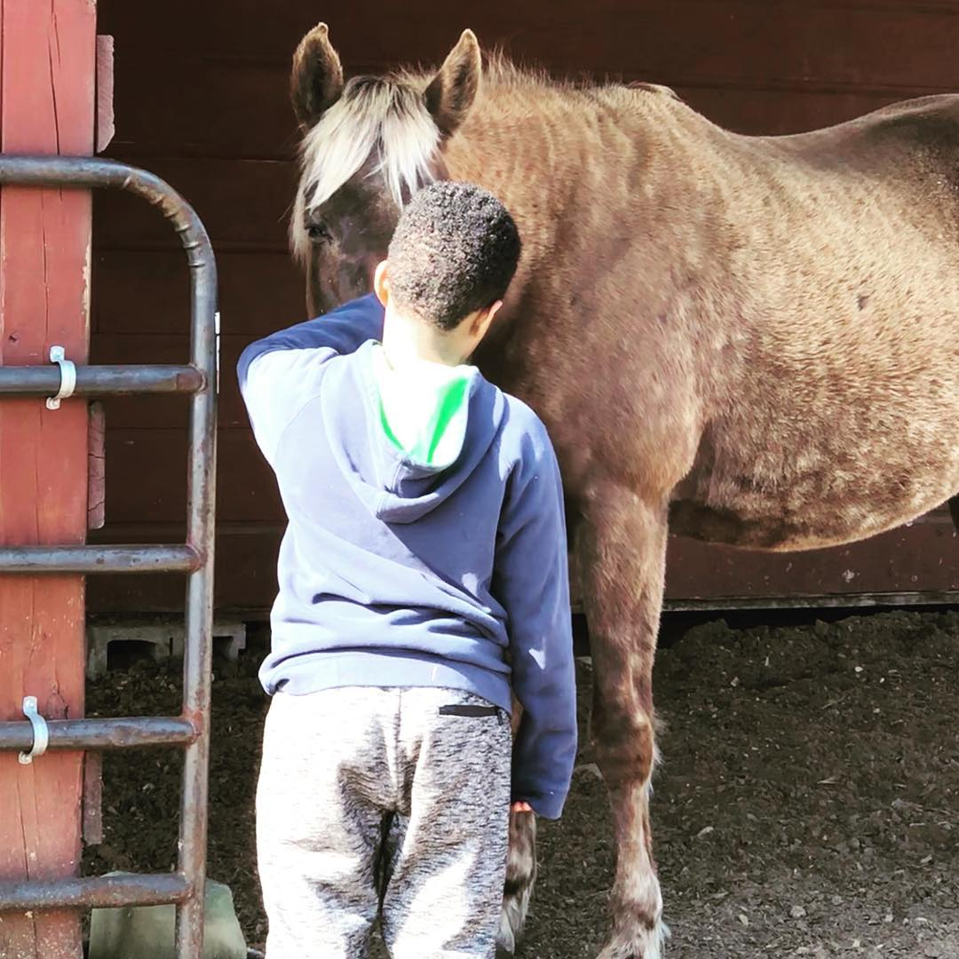 Equine-assisted Psychotherapy and Personal Development for children and teens at Peace Ranch