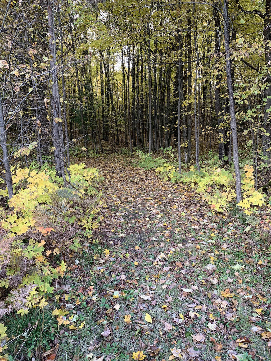 2019 Ranch Run Route at Peace Ranch in Traverse City, Michigan.