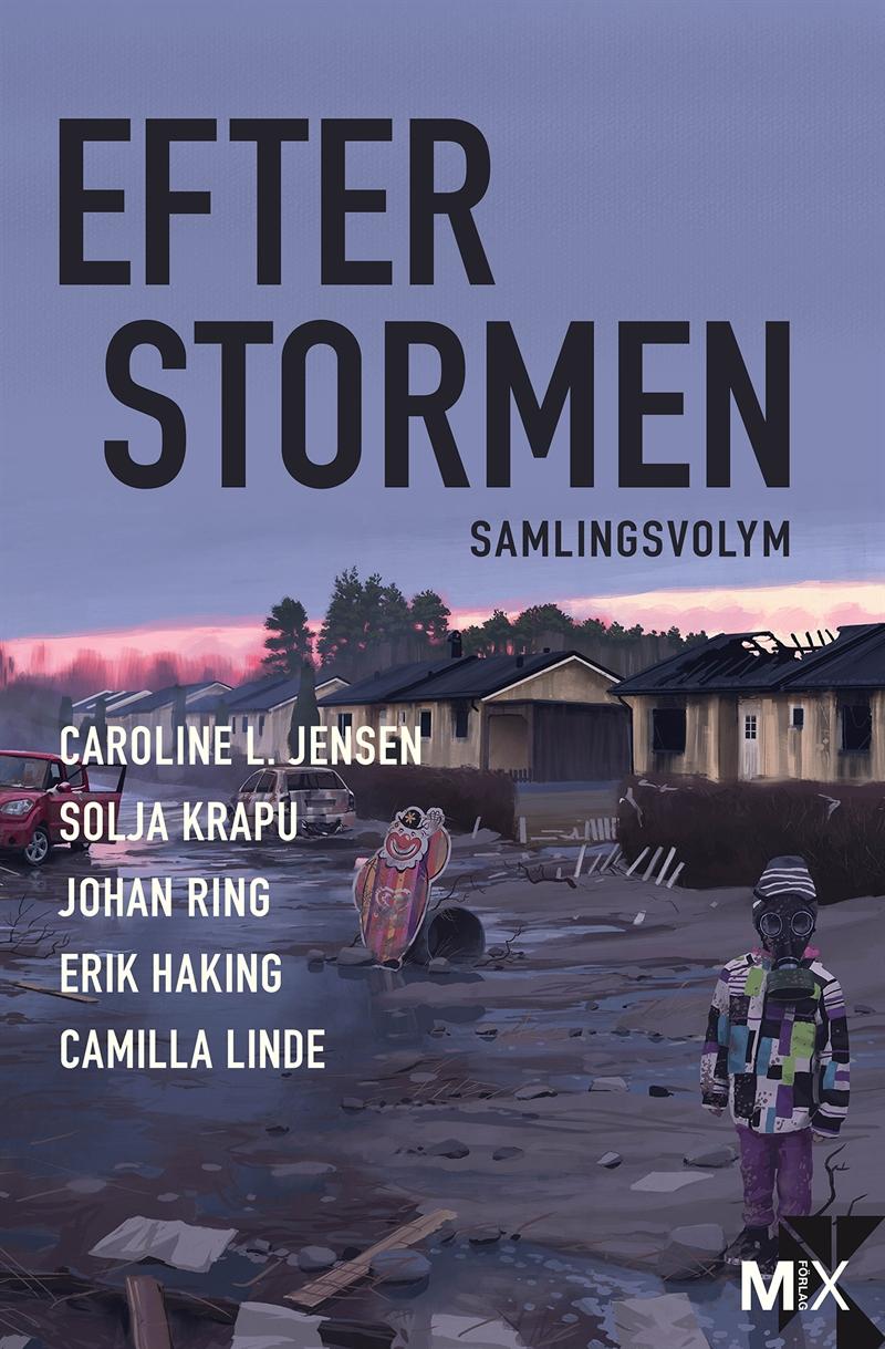 efter stormen2.jpg