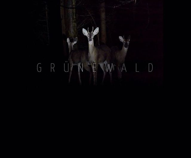 Grünewald, the latest series is now out!  The title 'Grünewald' is a tip of the hat to Berlin's Grunewald forest, home of the German Expressionist 'Brücke Museum' , where the concepts for this collection first came together. Seasoned viewers of Switzer's paintings will see themes familiar from previous works. However, here in the Grünewald series, we get a widescreen elaboration. Seen through a Hitchcockian lens, we encounter these narrative spaces as if unseen observers -  witness to an exchange of motifs jostling for the final word.  To read more about Grünewald visit the link in bio.  Grünewald | 160 x 190cm  Doctor in Repose | 120 x 80cm   Stockholm Suburbs | 80 x 120cm  Sixty One Revisited | 80 x 60cm  Owl | 50 x 40cm  Orphan | 50 x 40cm  Doctor | 50 x 40cm  Flowers | 50 x 40cm  #grünewald #series #art #oiloncanvas