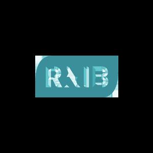 rnib-logo.png