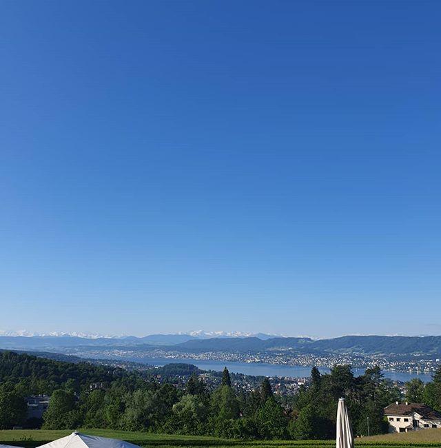 good morning, world 🐛☀️ finally, summer is here! we send you our best regards from Zürichberg ☀️ . #sorellhotelzurichberg #welcometoourhotel #workwithaview #allfortheguests #Zürich #atthetop #topview #viewgoals #summer #sunshine #nofilter