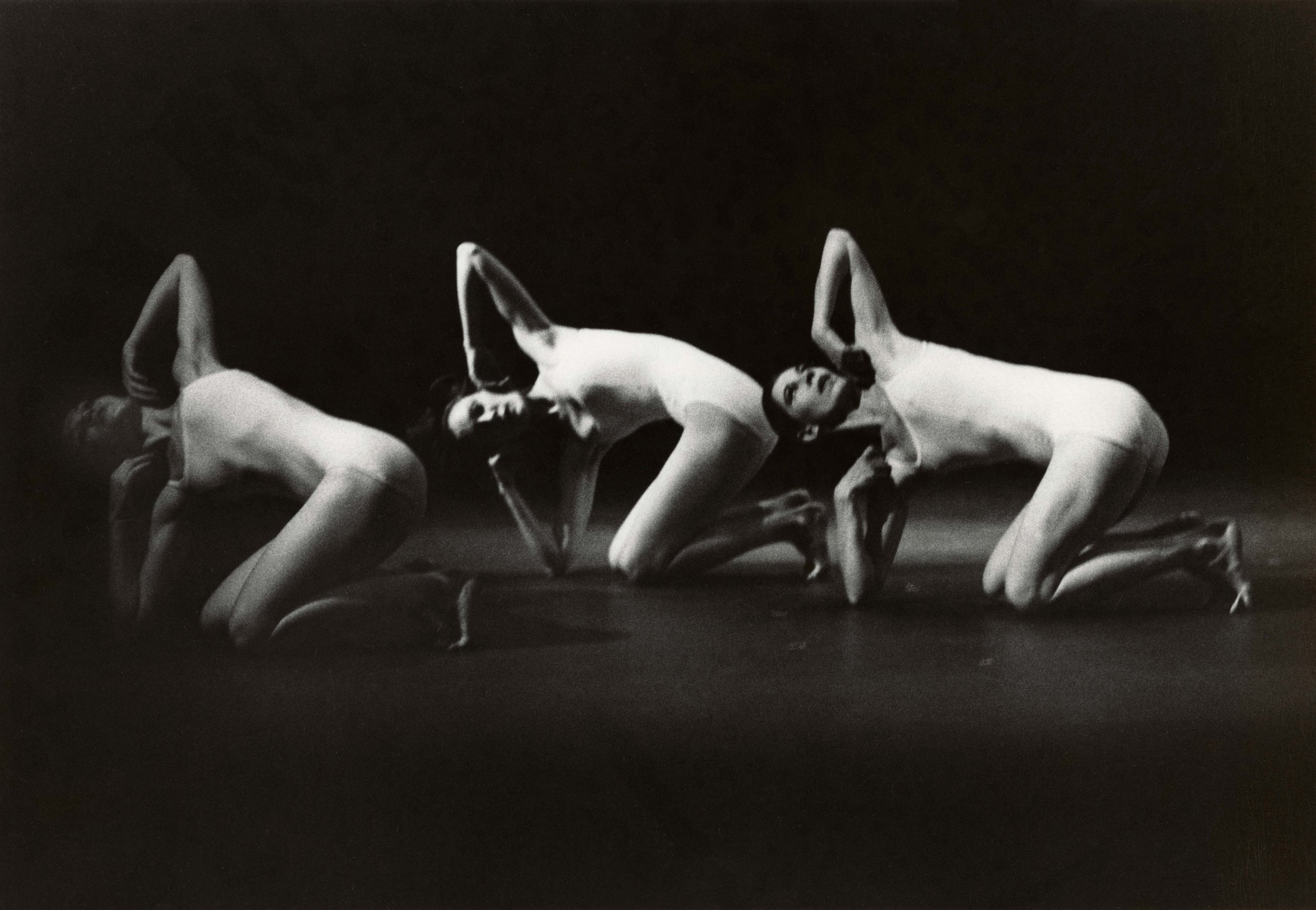 Yellow Point  (1975)  Photo Credit:  Lois Greenfield