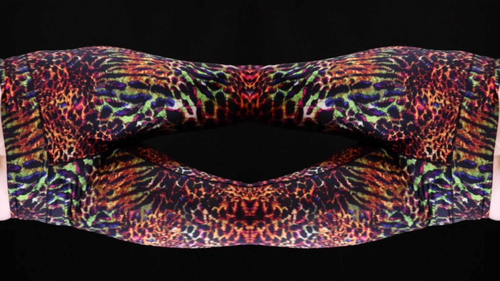 horizontal_dance3.jpg