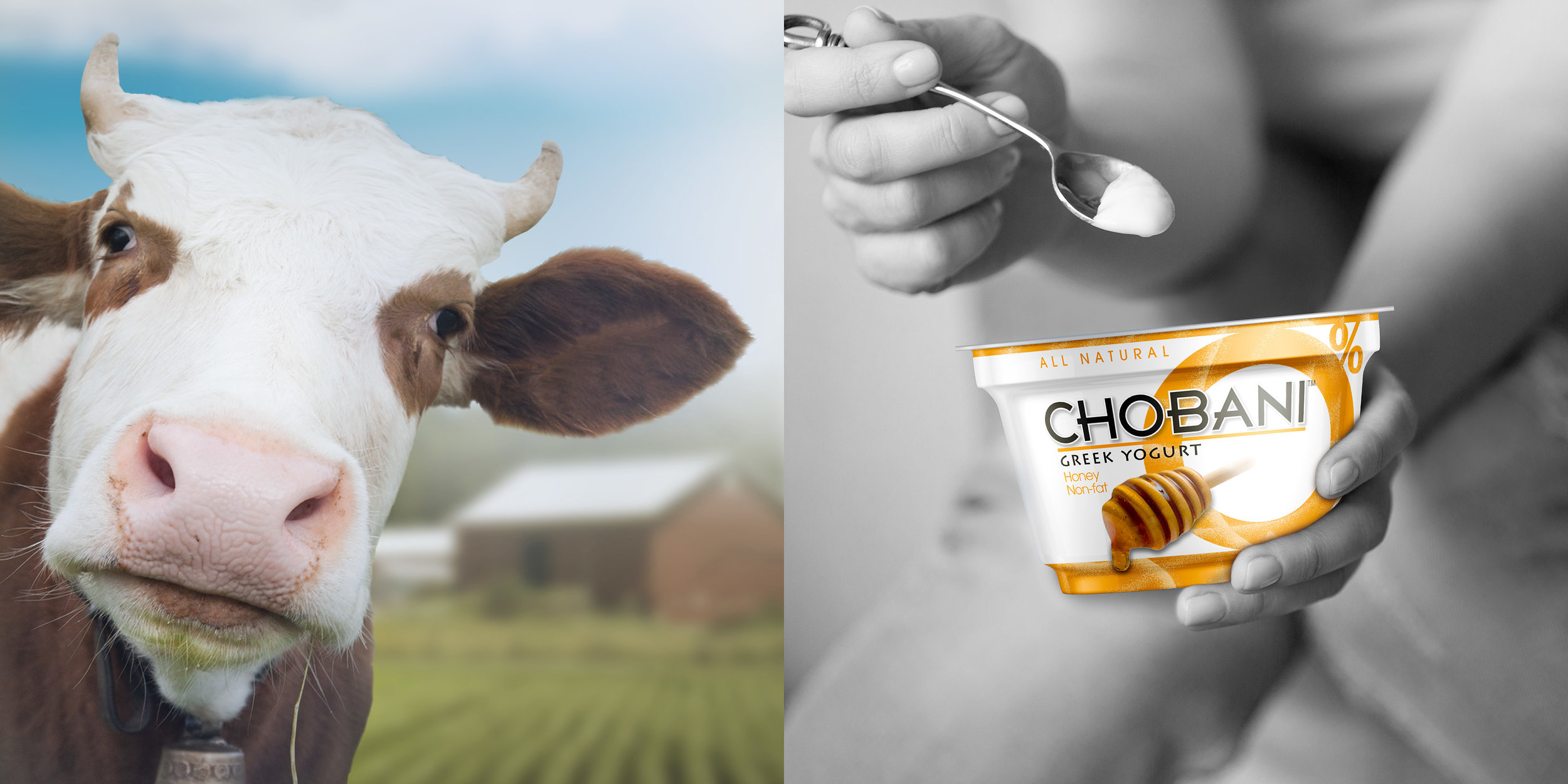 Image_12x6_Chobani_2up.jpg