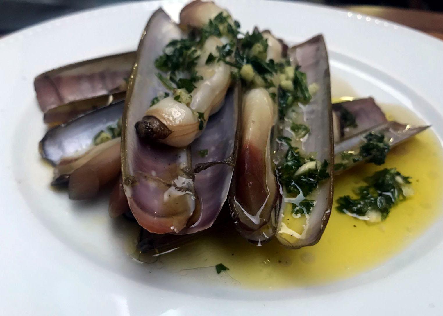 razor clam.jpg
