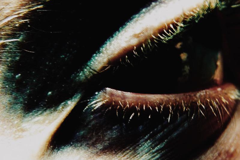 photo fine art projet mémoire de rêvelise rohart - détail d'un oeil.jpg