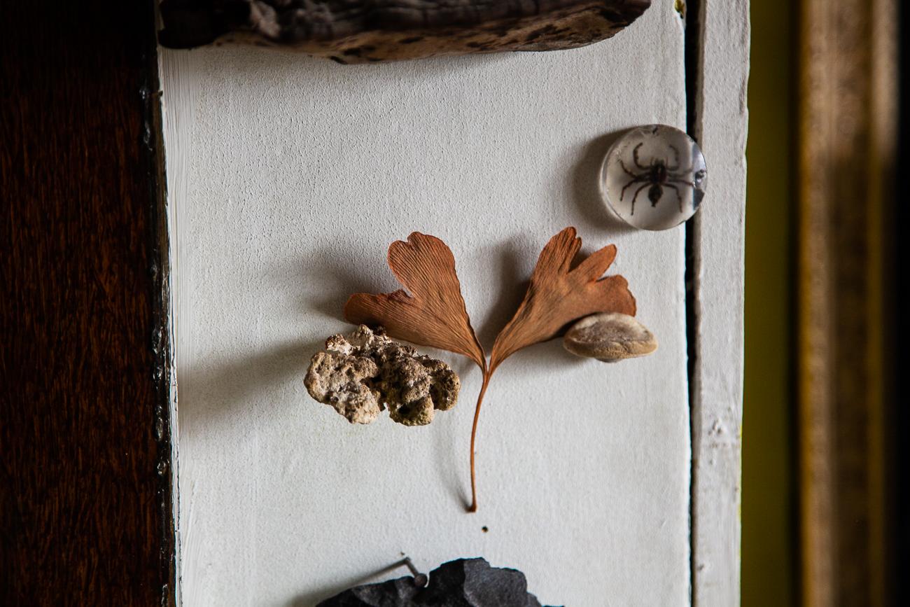 détail d'un mur - photo couleur fineart projet photo choses à soi de rêvelise rohart - série ciel sonore.jpg