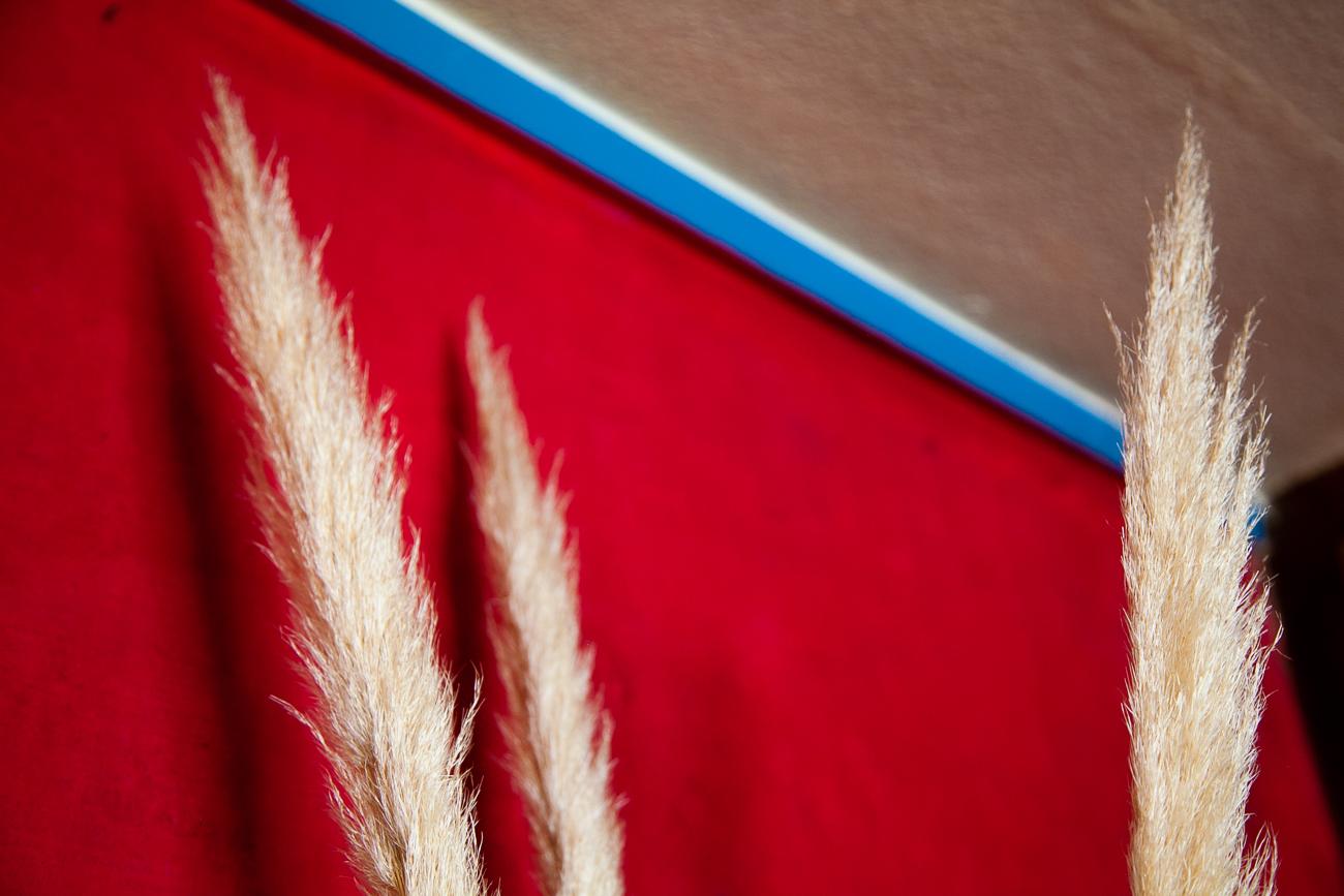 mur rouge avec pampas séchés - photo couleur fineart projet photo choses à soi de rêvelise rohart - série ciel sonore.jpg